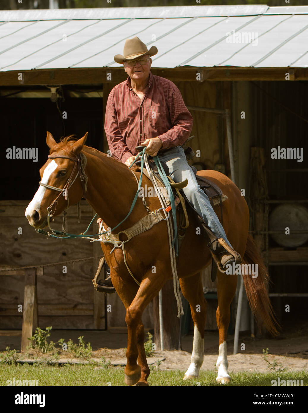 A cowboy heading out for a days work herding cows and mending fences. - Stock Image