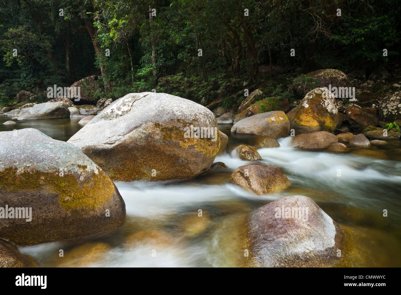 Rainforest stream at Mossman Gorge in the Daintree National Park. Mossman, Queensland, Australia - Stock Image