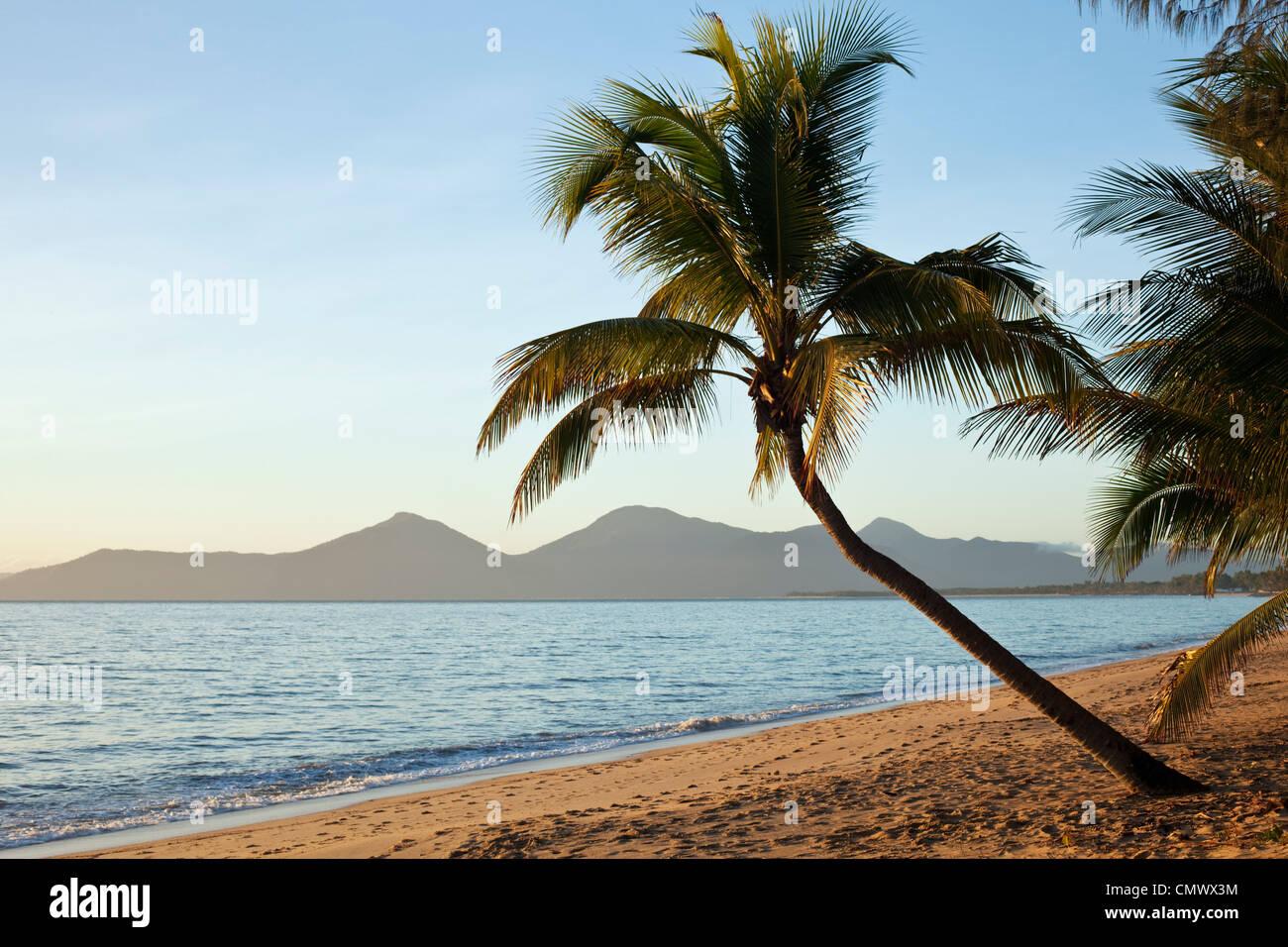 View along Holloways Beach at dawn. Cairns, Queensland, Australia - Stock Image