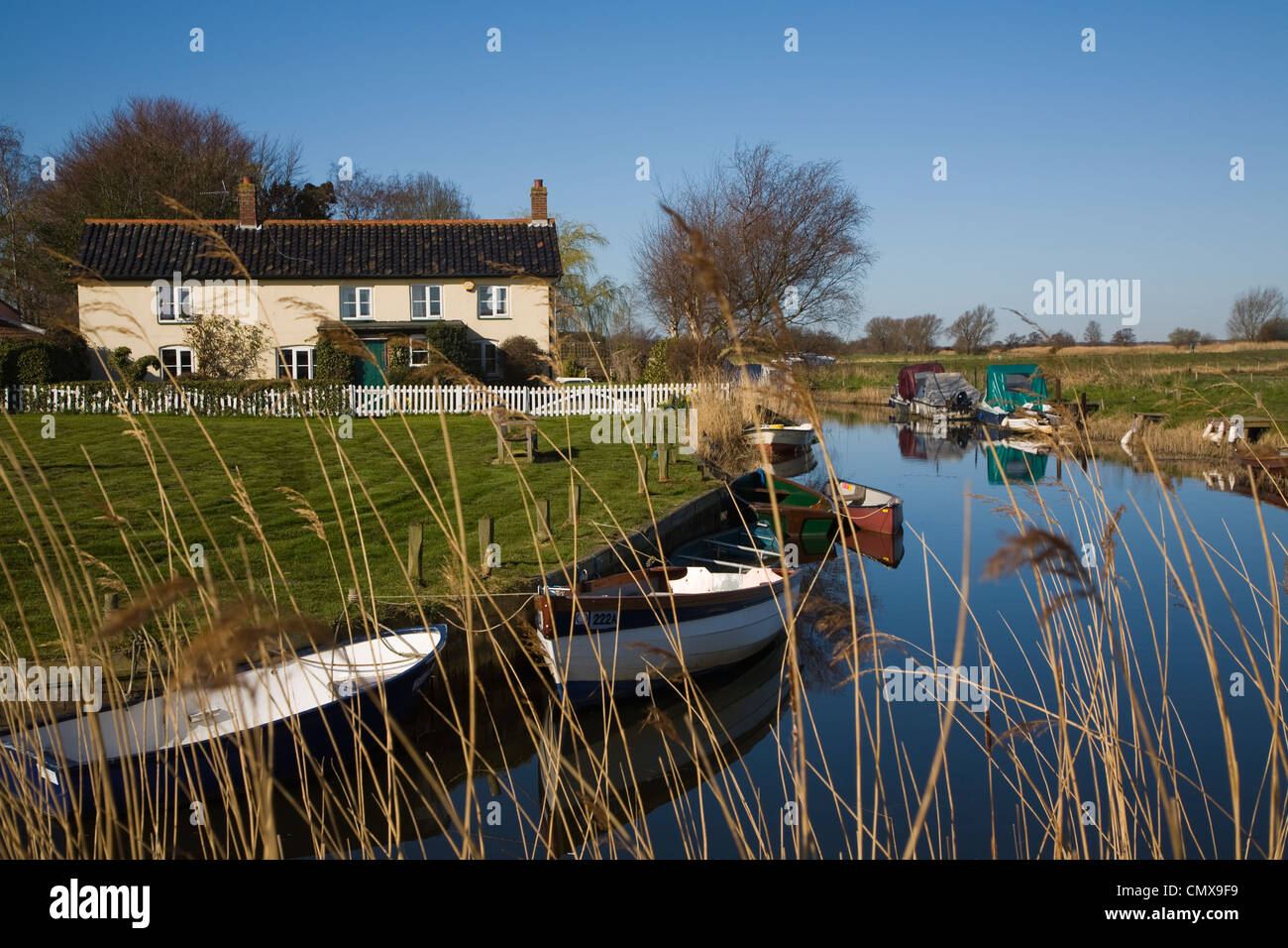 Norfolk Broads landscape at West Somerton, Norfolk, England - Stock Image