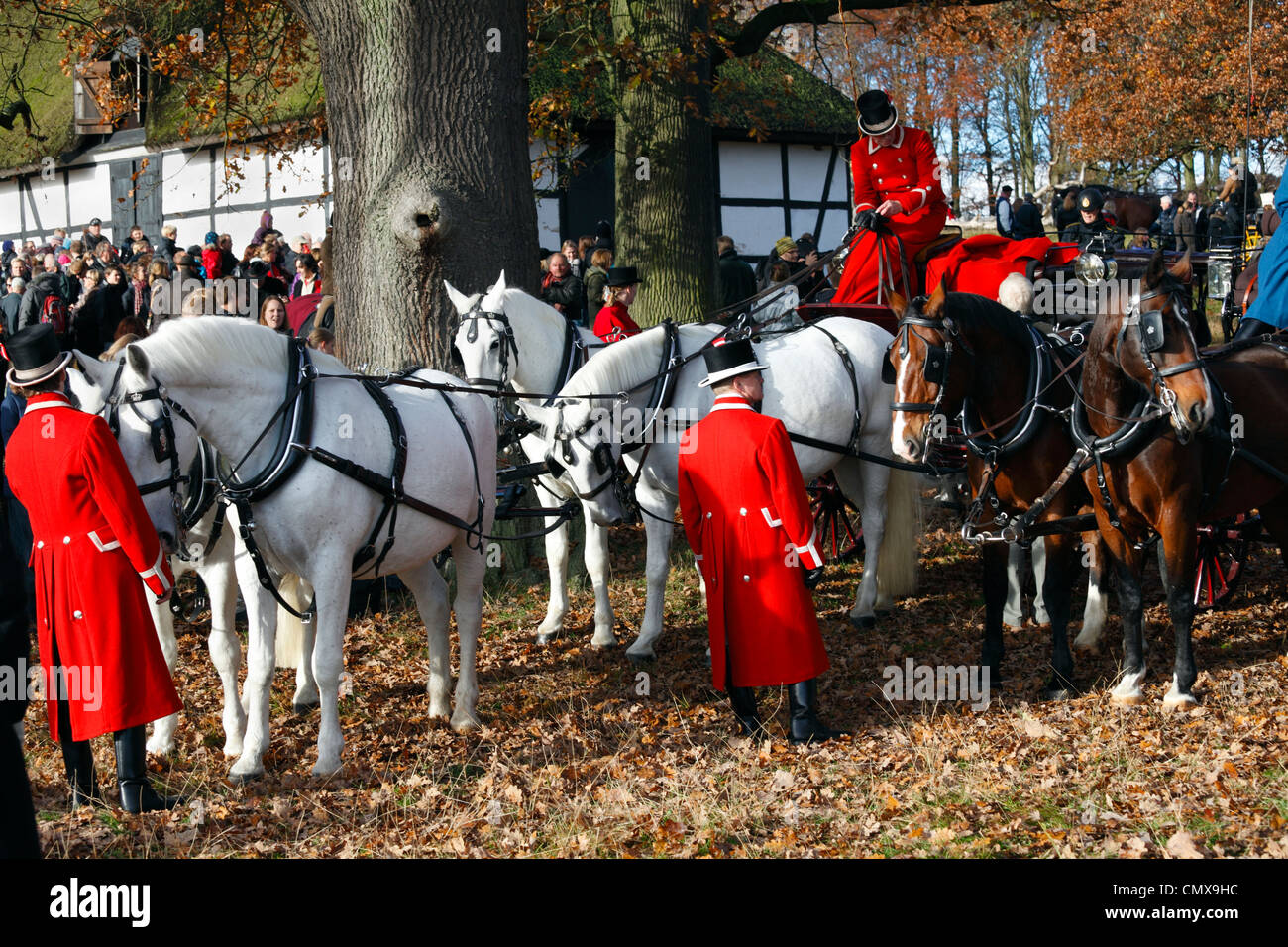 Horses, horse-drawn carriages and coachmen for the royal guests at the Hubertus Hunting in Dyrehaven just north - Stock Image