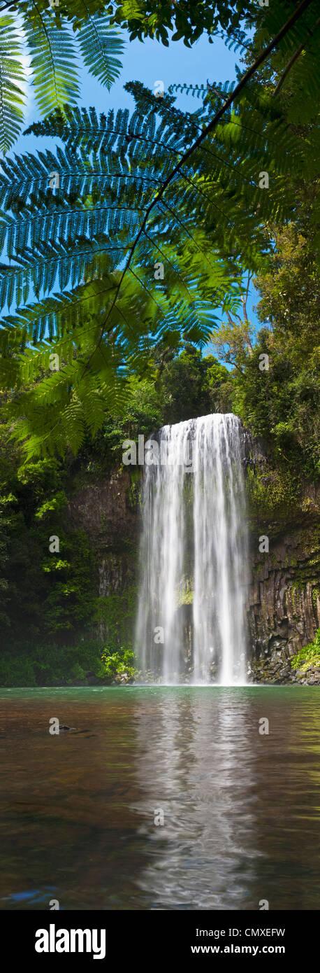 Millaa Millaa Falls on the Atherton Tablelands near Cairns, Queensland, Australia - Stock Image