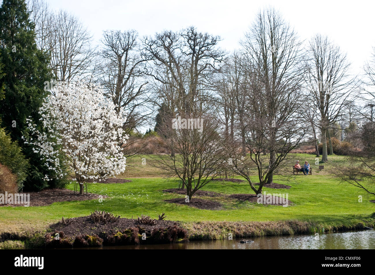 Savill Garden with two people on bench, Berkshire, England, UK - Stock Image