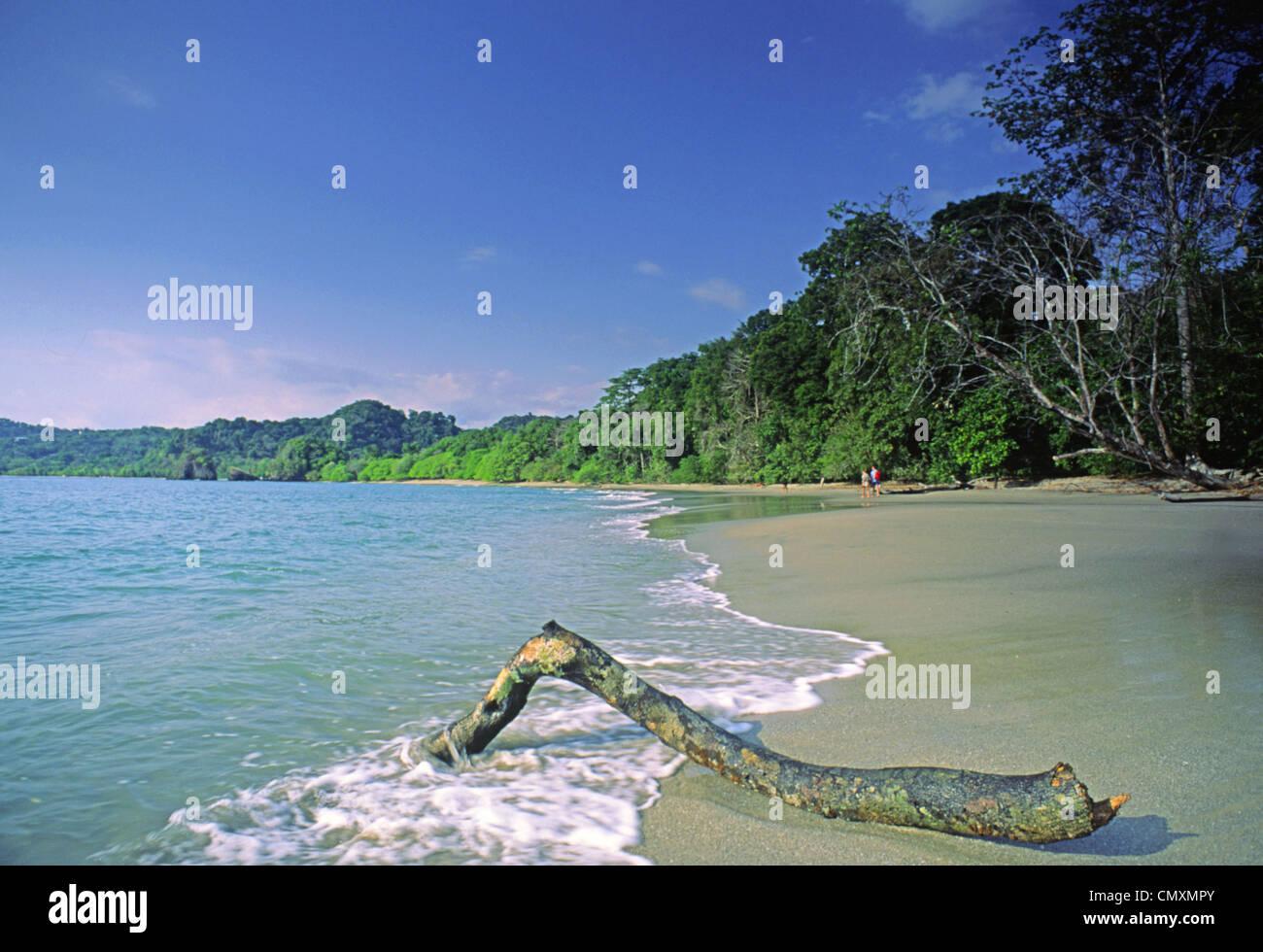 Savage beach, Maunel Antonio National Park, Costa Rica - Stock Image