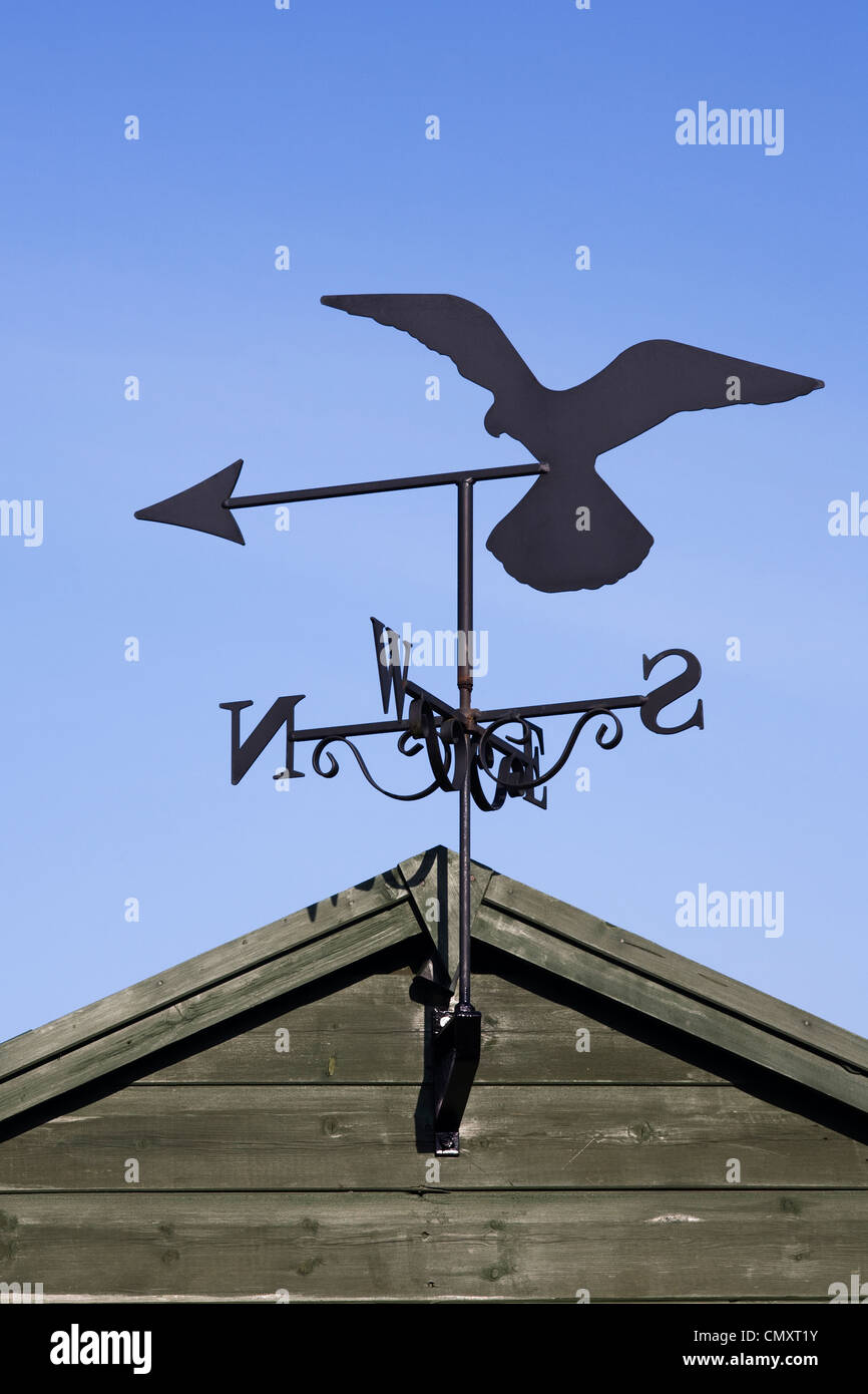 Superieur Falcon Weather Vane On A Garden Shed Against A Blue Sky.   Stock Image