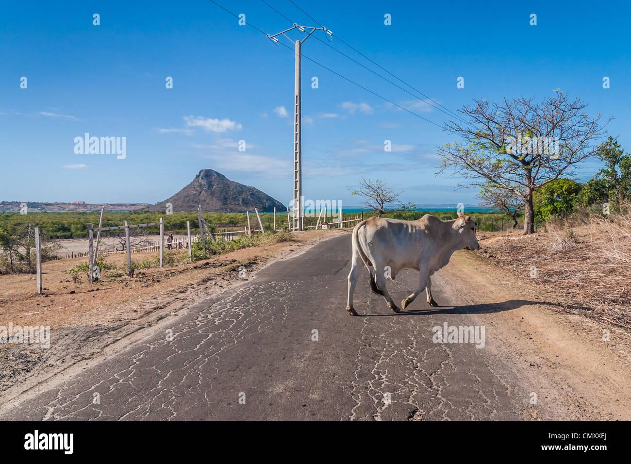 The road of Ramena, near Diego Suarez (Antsiranana), north of Madagascar - Stock Image