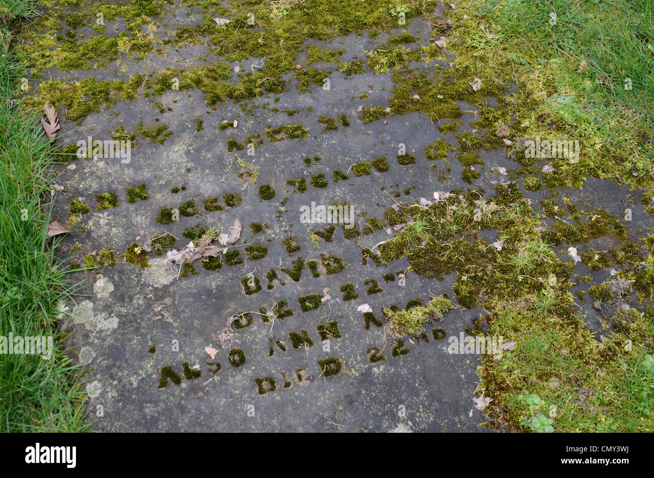 Gravestones just visible through the grass in the graveyard at Glasgow Cathedral, Scotland, UK. - Stock Image