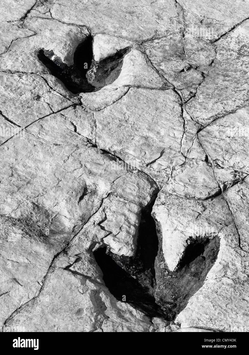 old prehistoric footprints - Stock Image