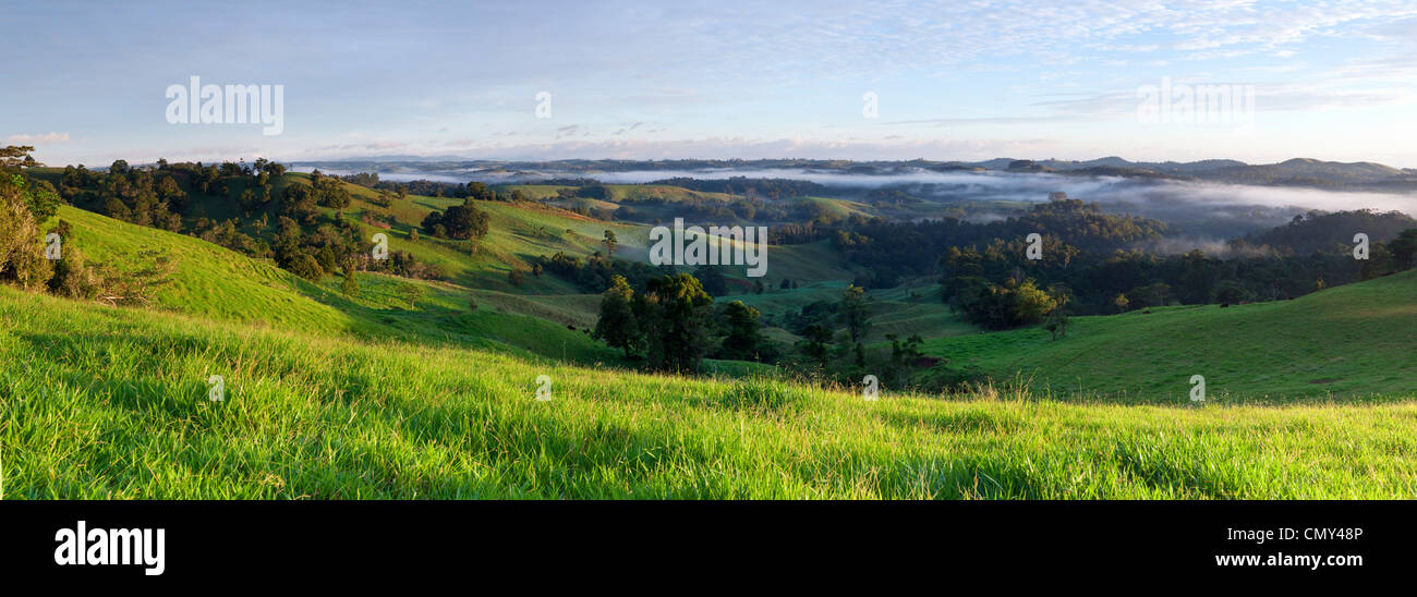 Rolling pastures on the Atherton Tablelands. Millaa Millaa, Queensland, Australia - Stock Image