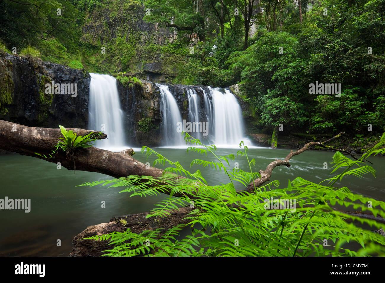Nandroya Falls in Wooroonooran National Park, Innisfail, Queensland, Australia - Stock Image