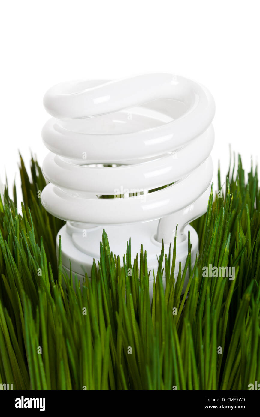 Compact Fluorescent Lightbulb and green grass - Stock Image