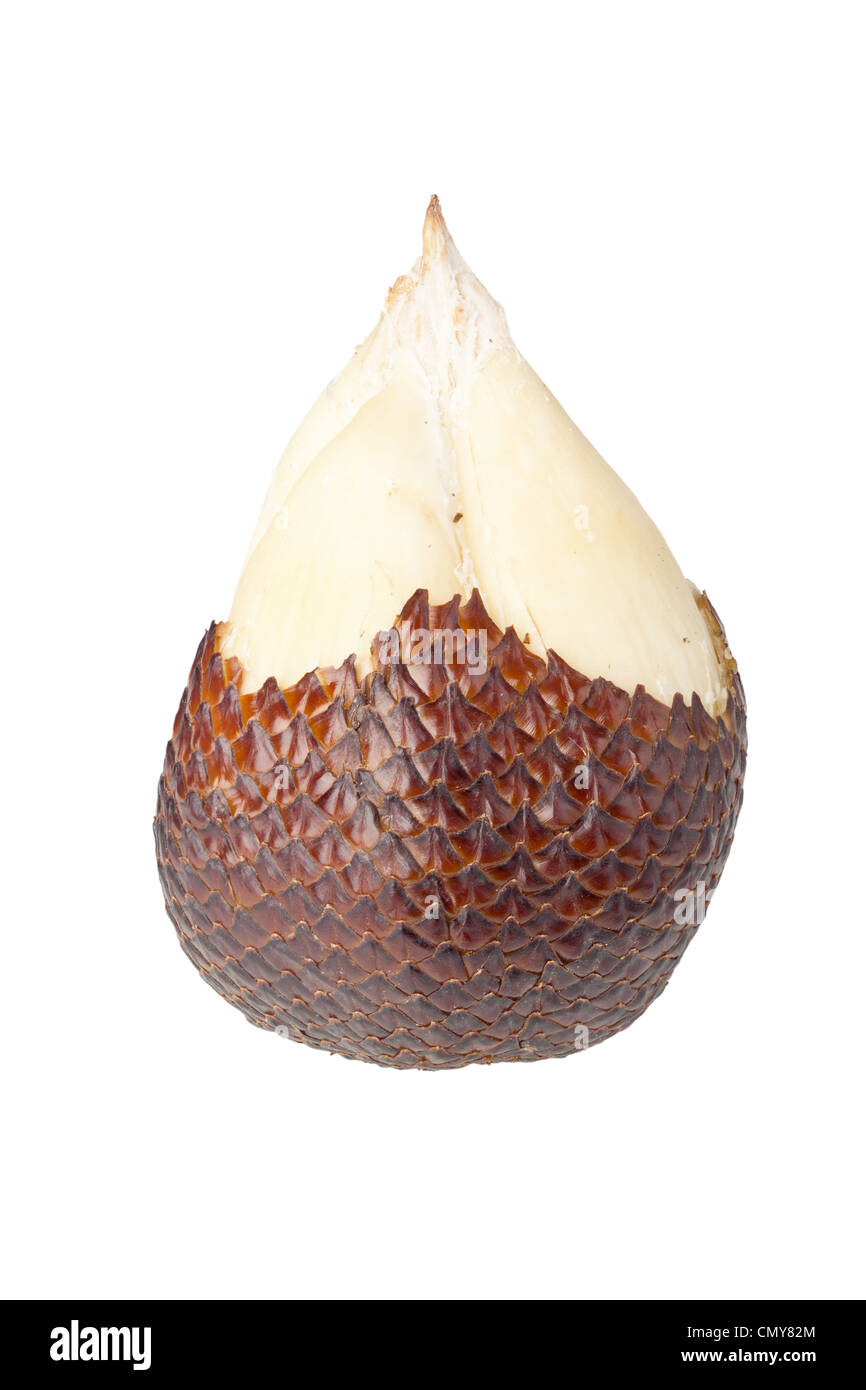 Single half peeled scaly snake fruit isolated on white background - Stock Image