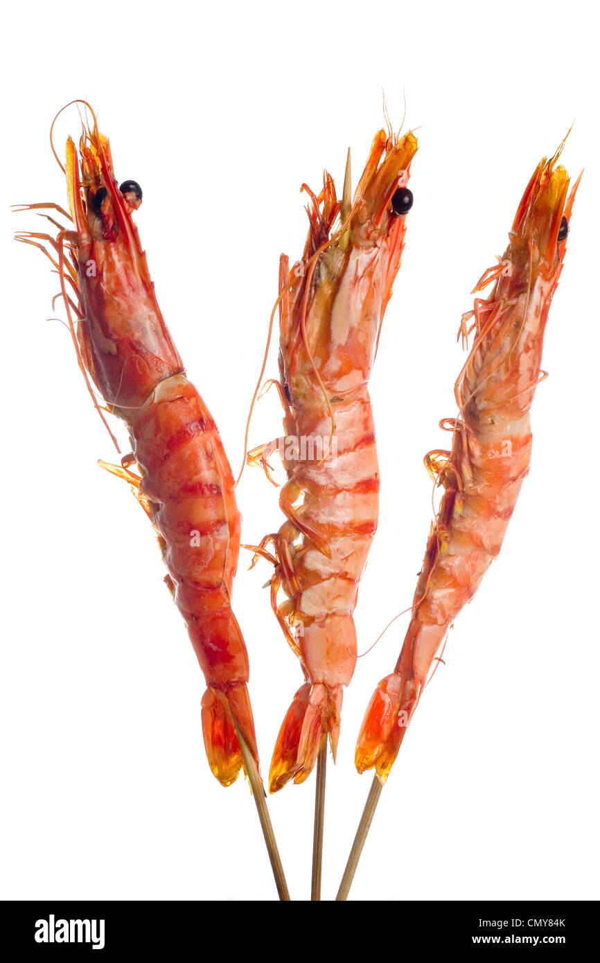 Three grilled tiger prawns on a skewer isolated on white background - Stock Image