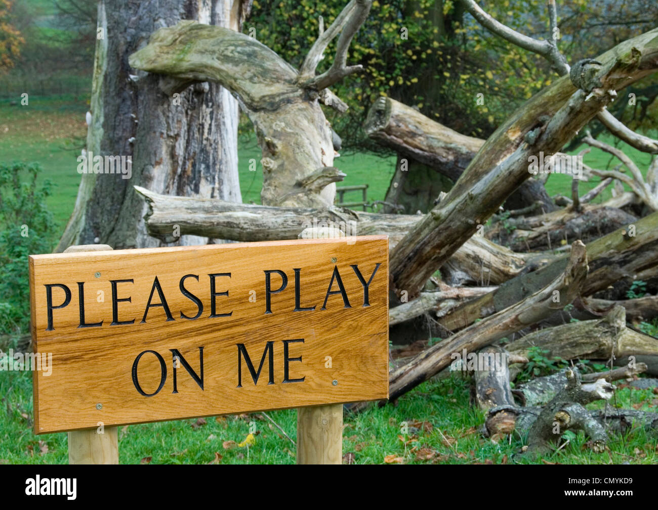 Adventure playground notice - invitation to play  -use imagination - enjoy a sense of danger - risk falling - be - Stock Image
