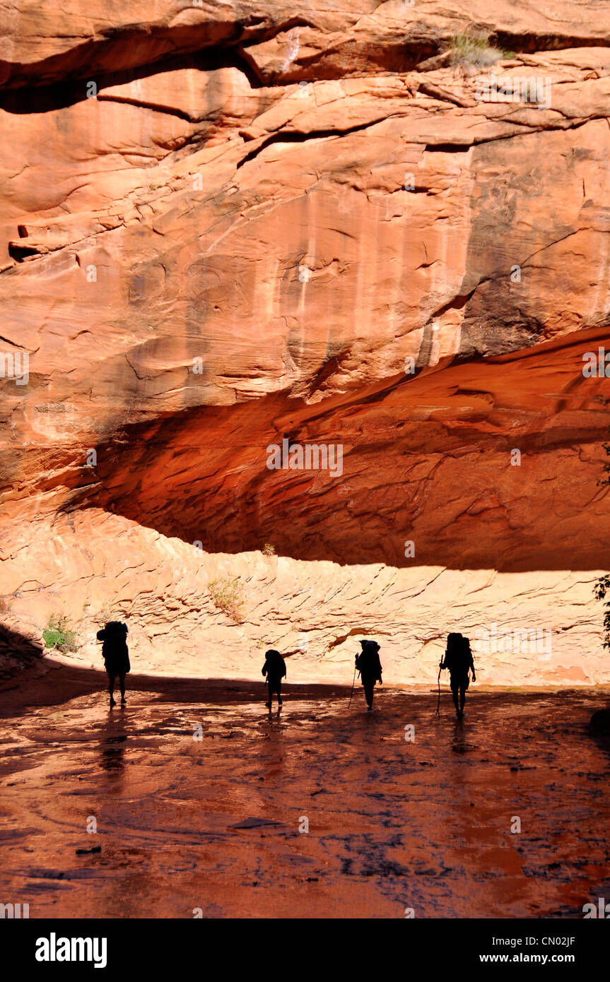 Family backpacking in Coyote Gulch, a tributary of the Escalante River in Southern Utah. - Stock Image