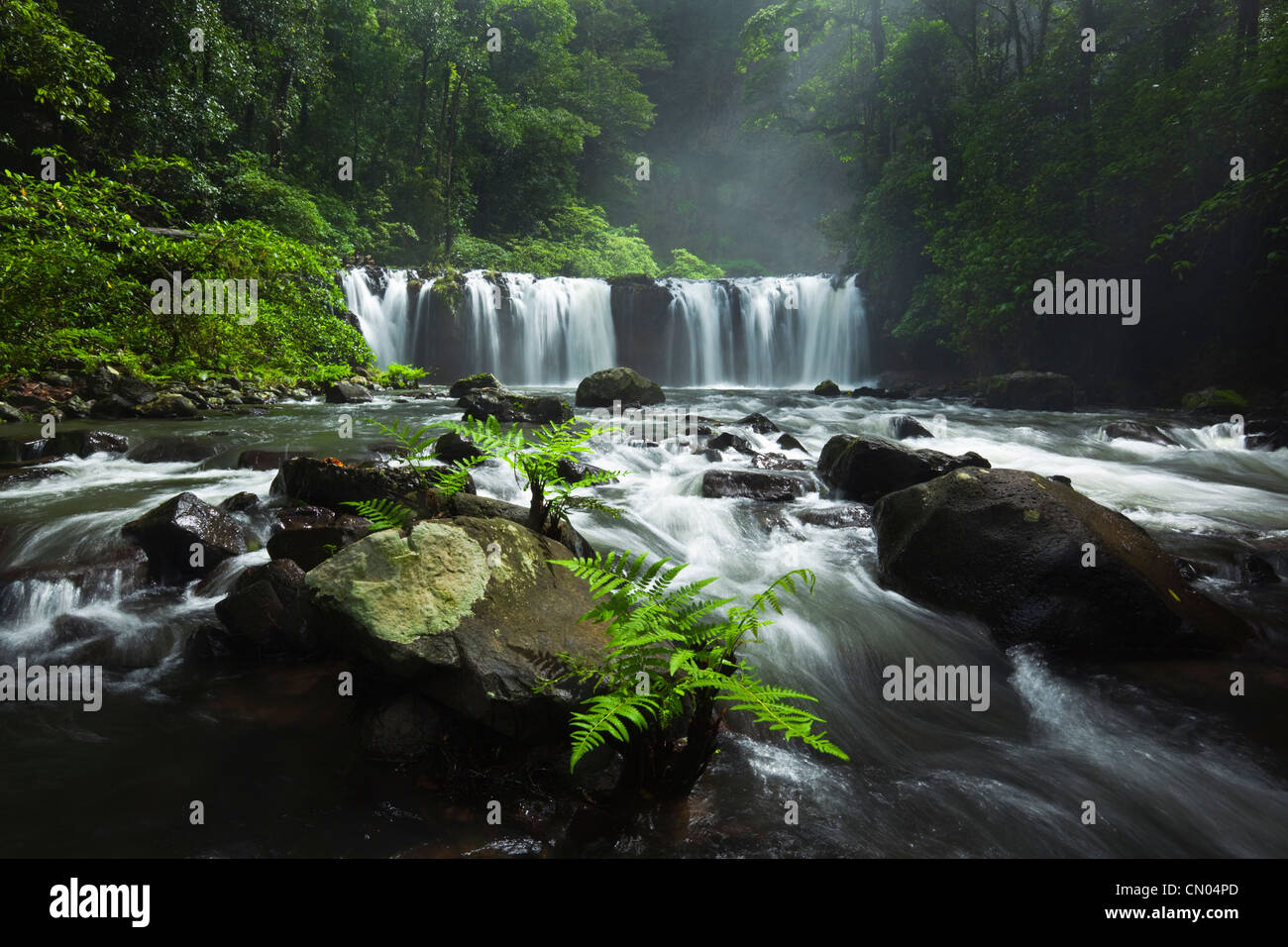 Nandroya Falls in Wooroonooran National Park.  Atherton Tablelands, Innisfail, Queensland, Australia - Stock Image