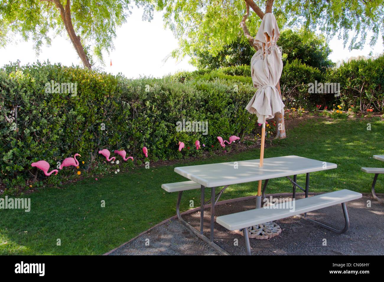 Backyard with table and umbrella - Stock Image