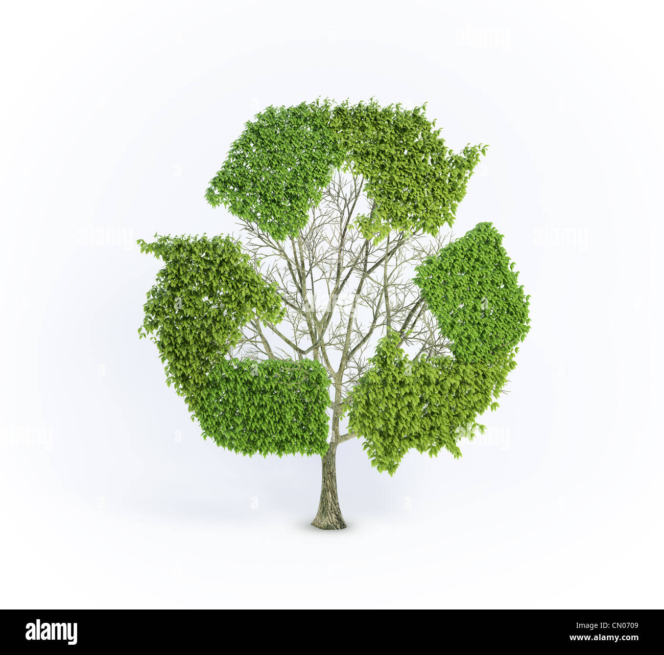 Renewable Development Concept Tree With The Recycling Symbol Stock