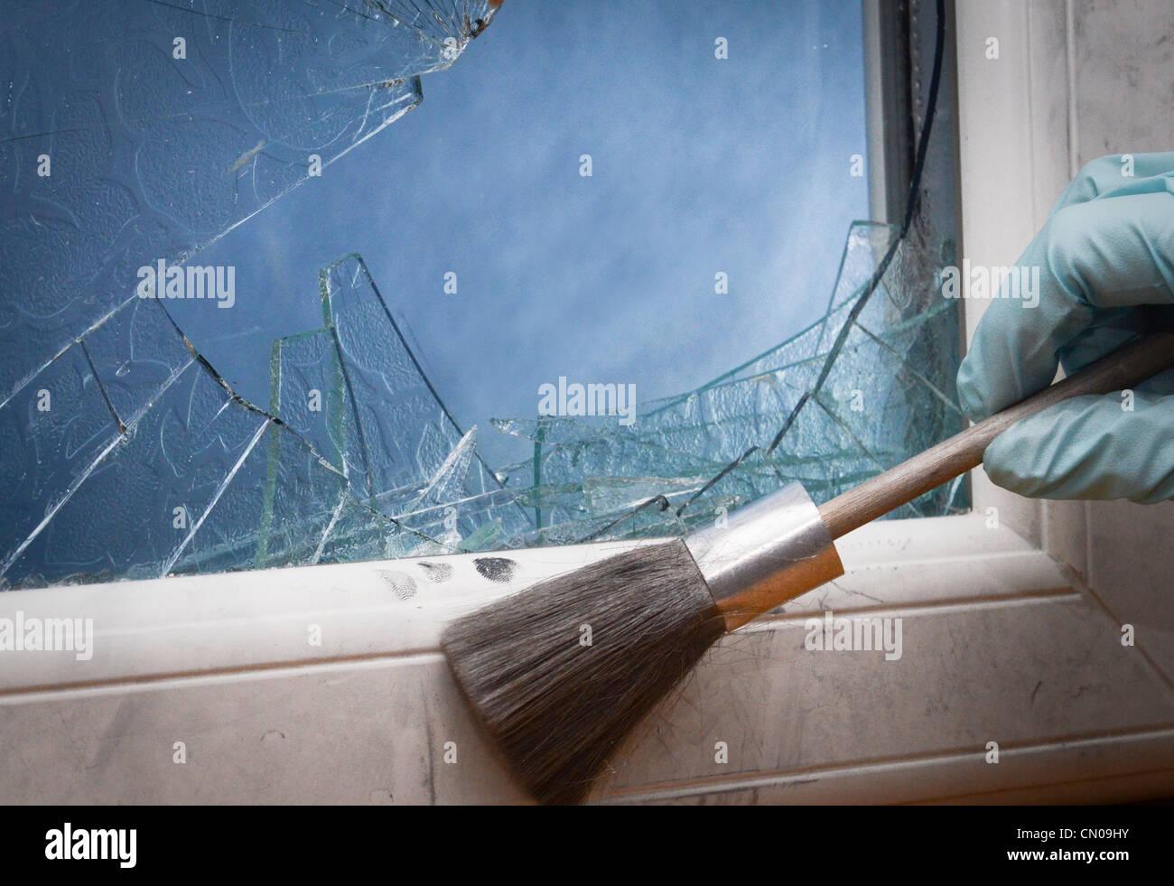 Crime Scene Investigator fingerprinting a smashed window - Stock Image