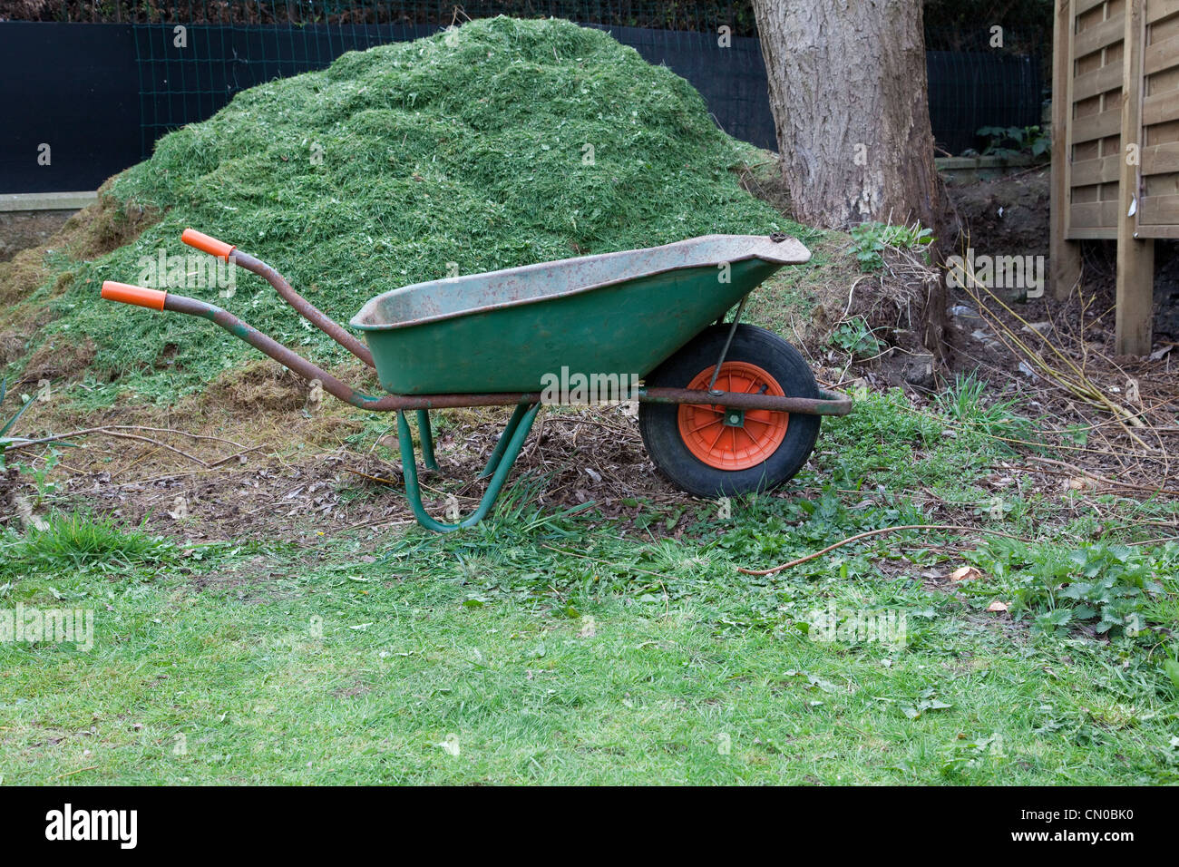 Garden wheelbarrow in front of a compost heap and grass cuttings - Stock Image