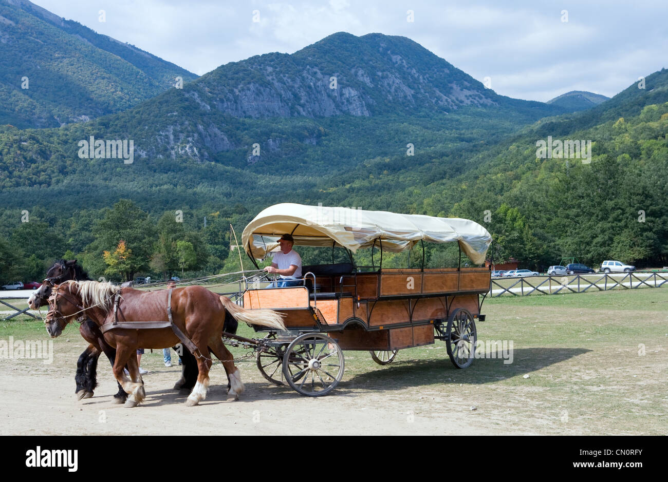Italy, a tourist carriage in Abruzzo's National Park - Stock Image
