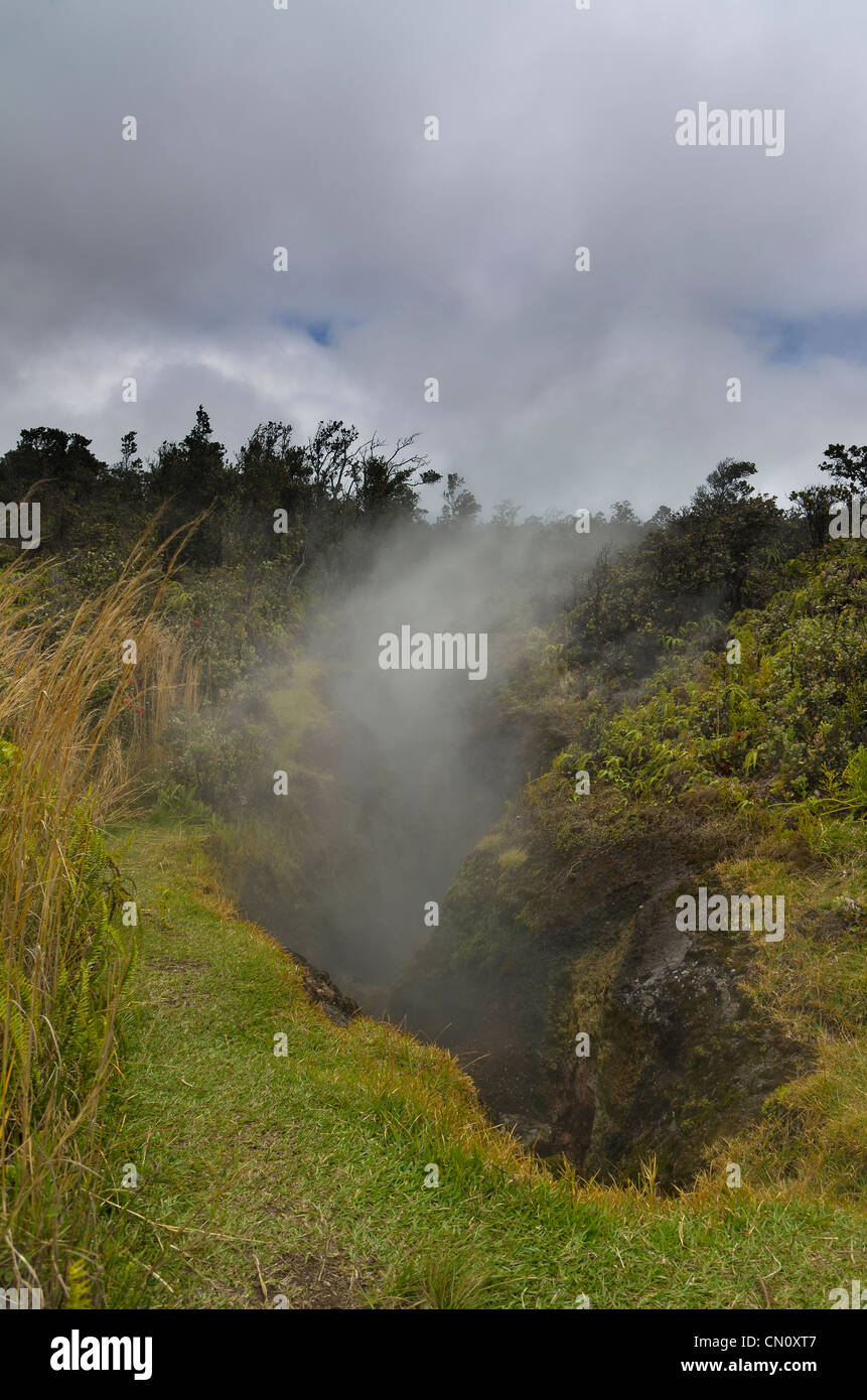 steam vents, Volcano National Park, Big Island, Hawaii - Stock Image