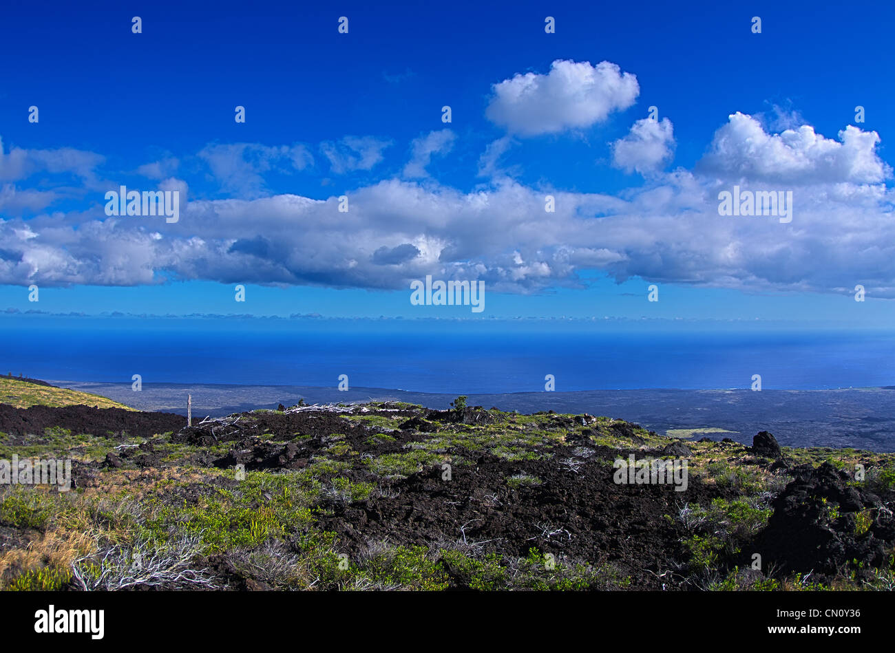 lava fields and the pacific ocean from the chain of craters road, Volcano National Park, Big Island, Hawaii - Stock Image