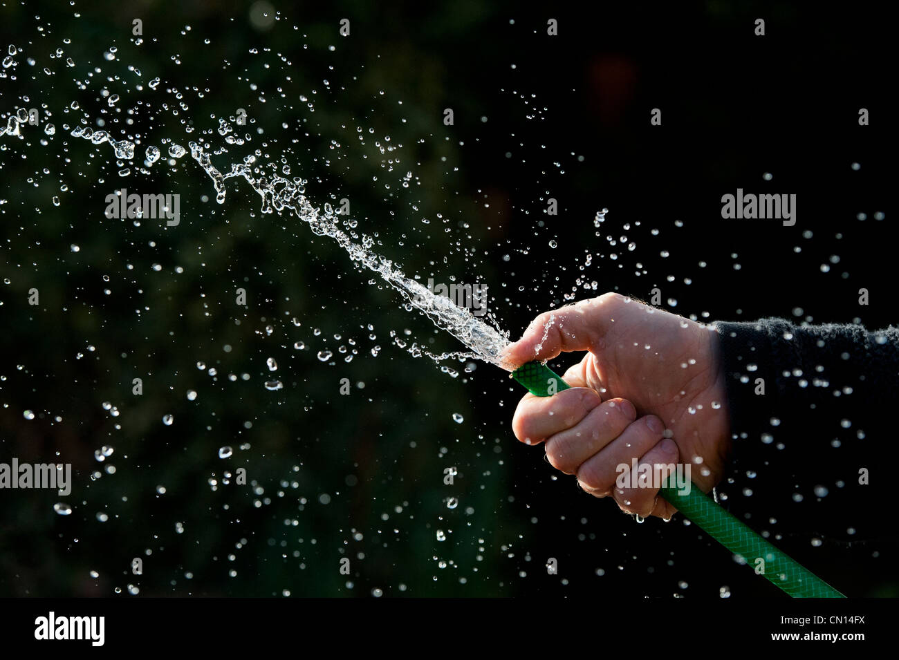 Hand spraying water with hosepipe against a dark background - Stock Image