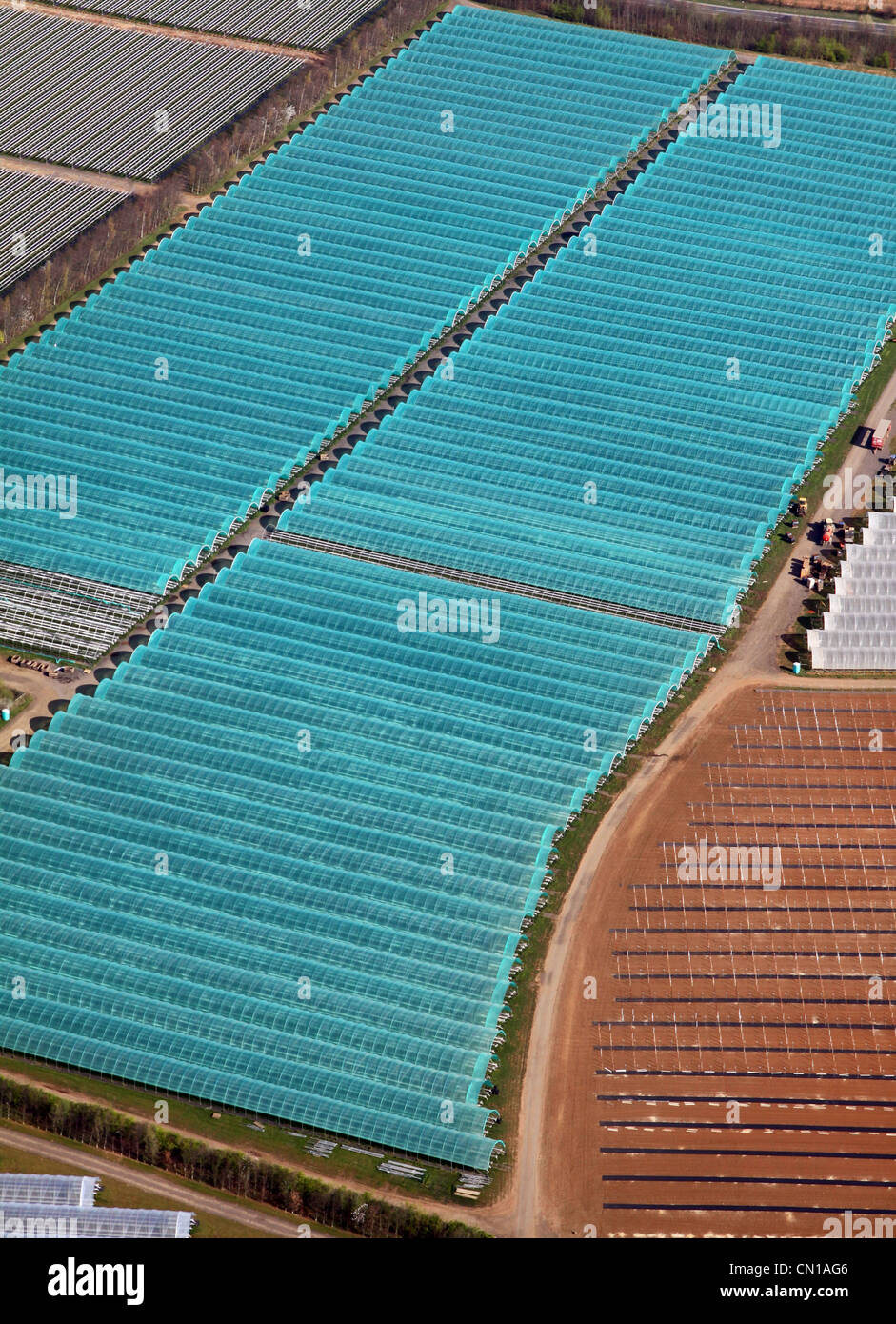 Aerial view of commercial polytunnels at Makins commercial growers business at Garforth near Leeds taken in 2012 Stock Photo