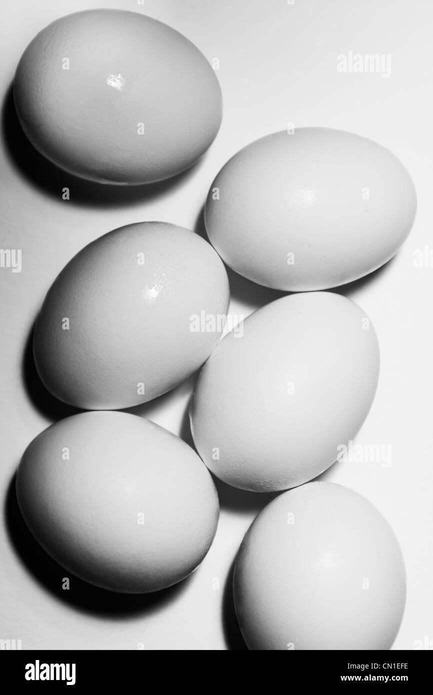 Six White Eggs - Stock Image