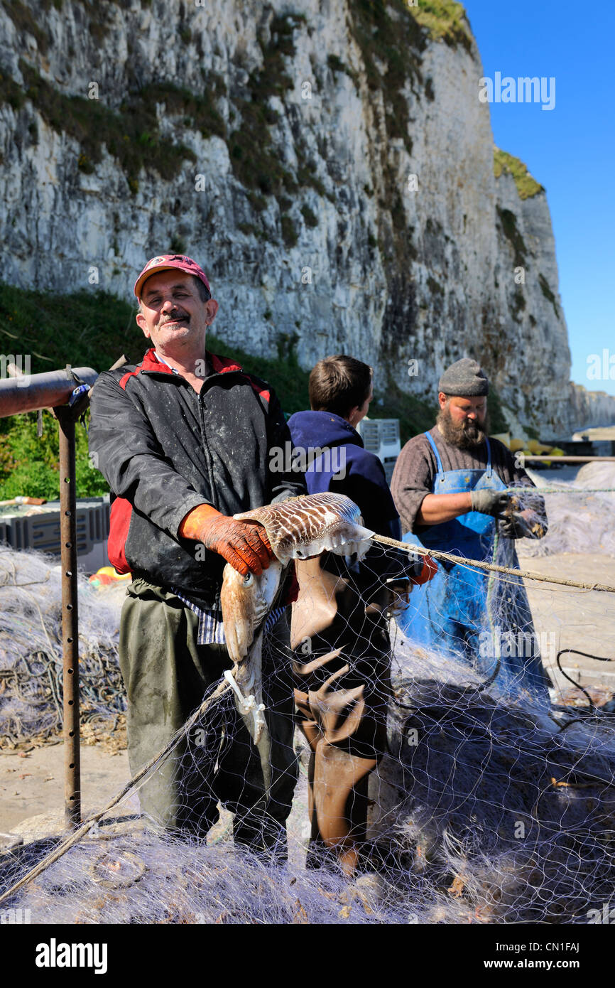 France, Seine Maritime, Veules les Roses, fisherman retrieving the catch of the day of the nets - Stock Image