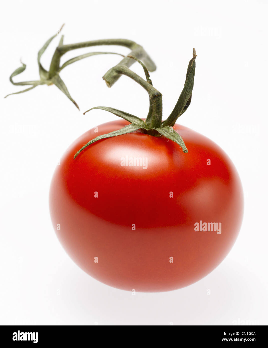 Whole Red Cherry Tomato with Stem Stock Photo