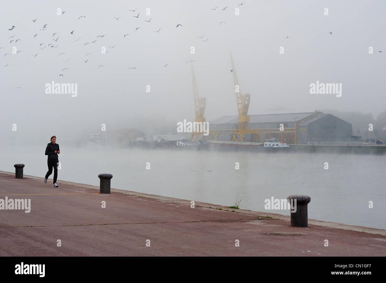 France, Seine Maritime, Rouen, the former docks on the Seine banks, the cranes under mist - Stock Image