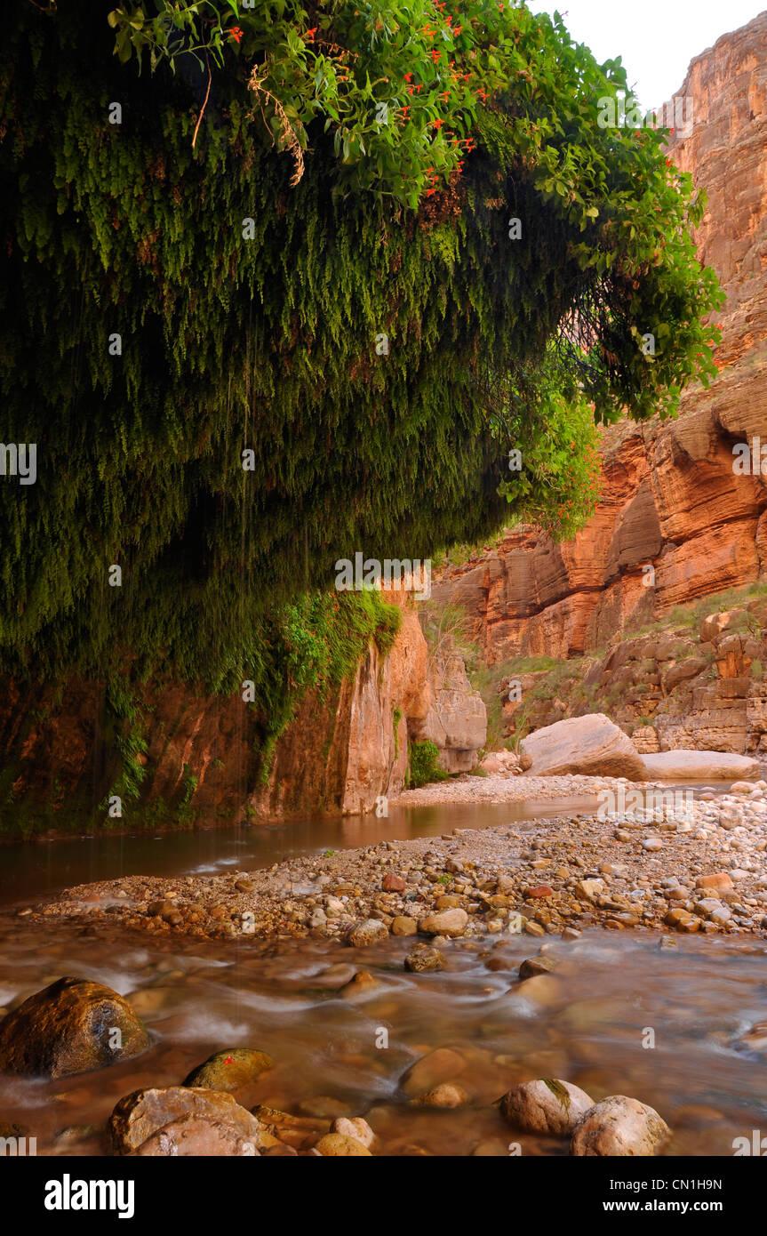 Falling waters creek stock photos falling waters creek for The canyons at falling water
