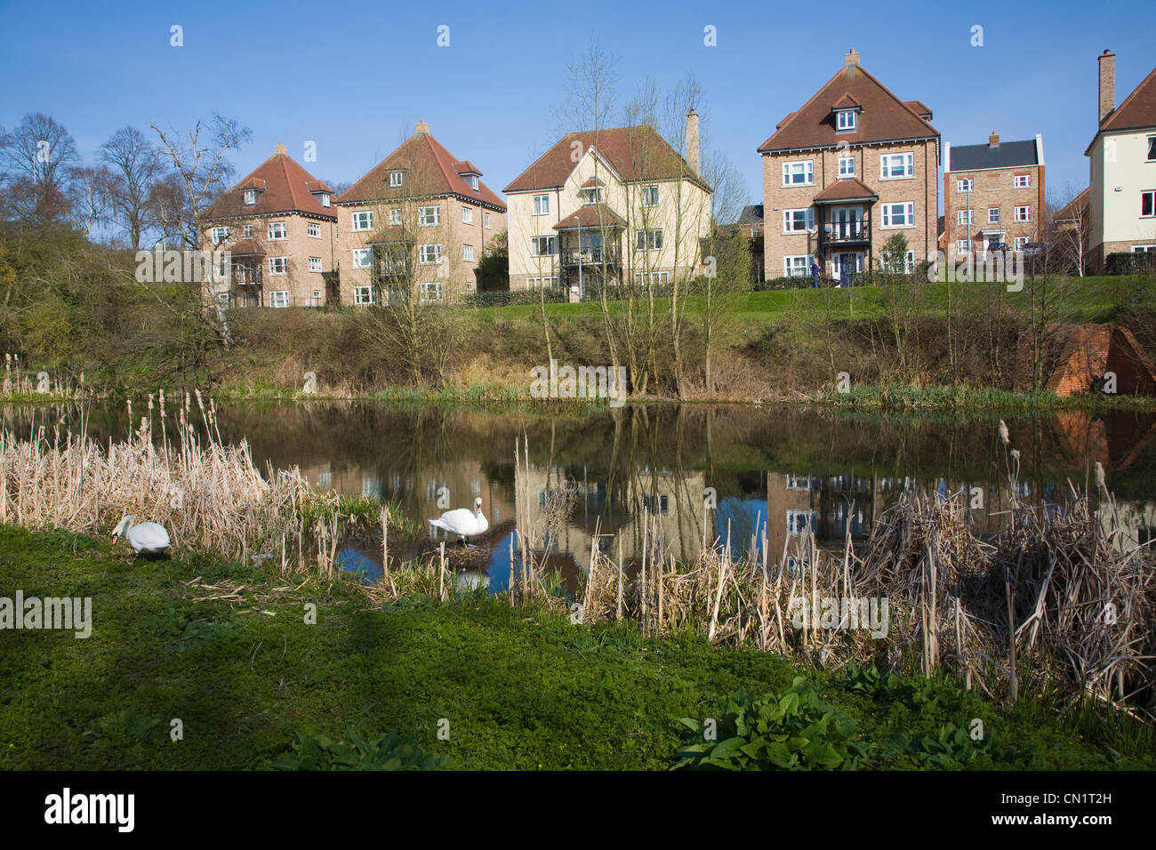 New housing development by River Colne Colchester Essex England reflected in water - Stock Image