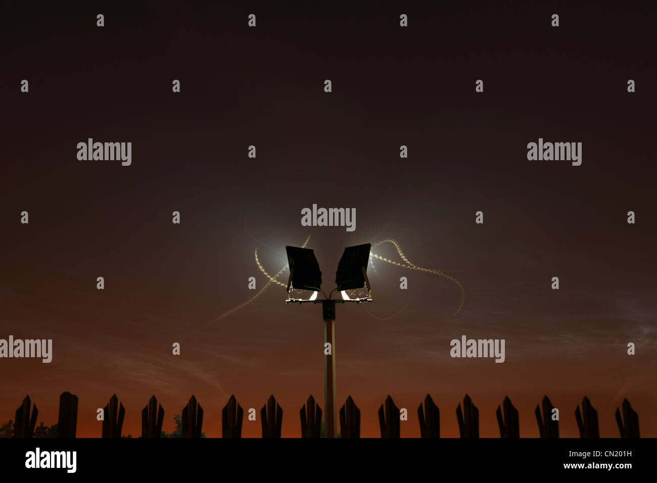 Moth trails around security light at night - Stock Image