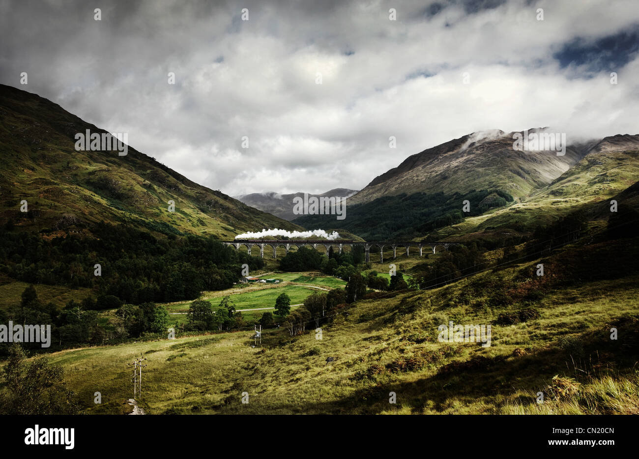 Steam train crossing Glenfinnan viaduct, Scotland - Stock Image
