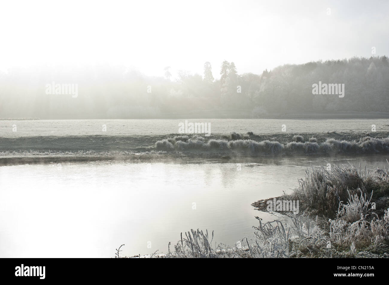 Frosty lake in winter - Stock Image