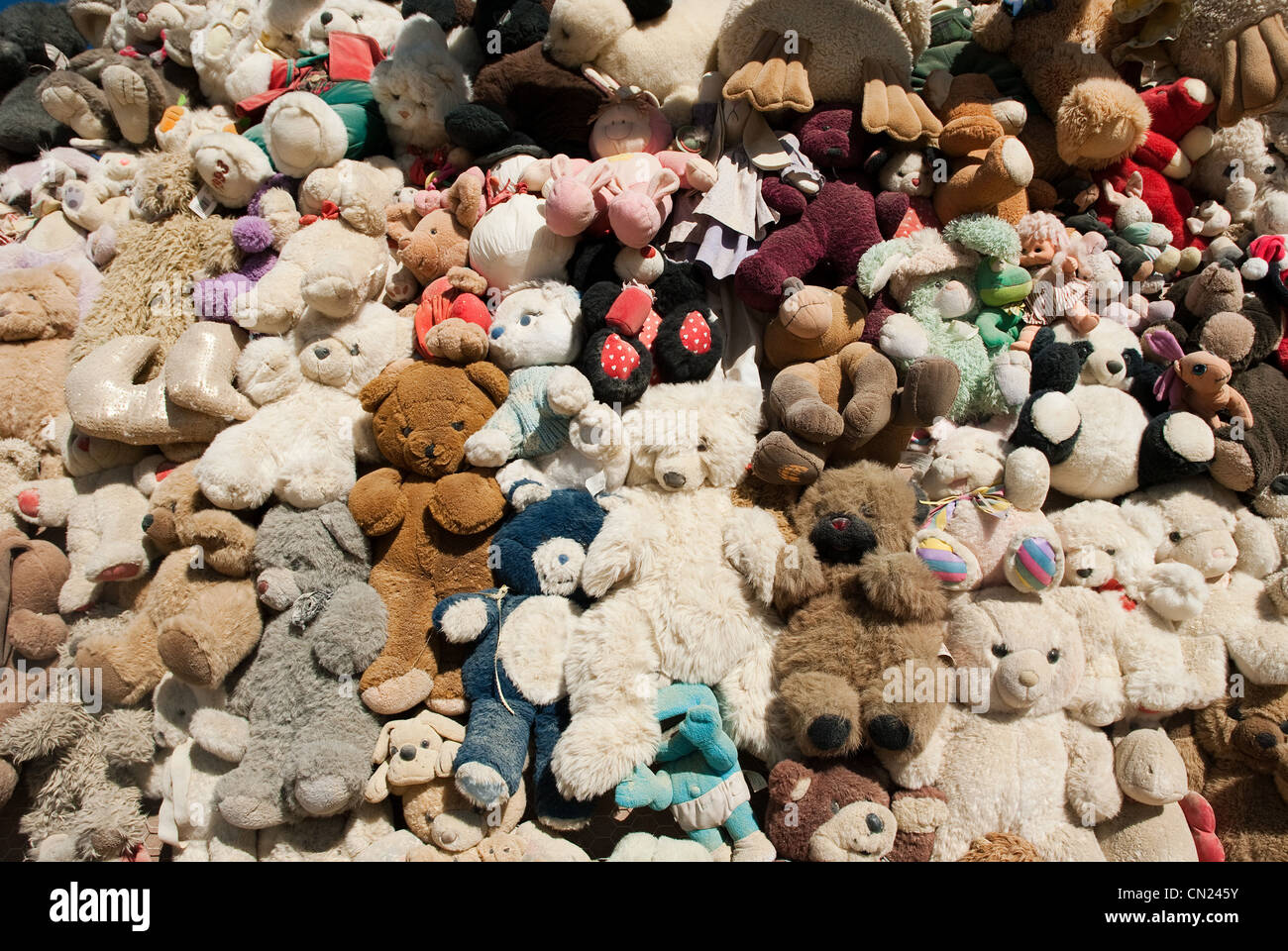 Large group of teddy bears - Stock Image