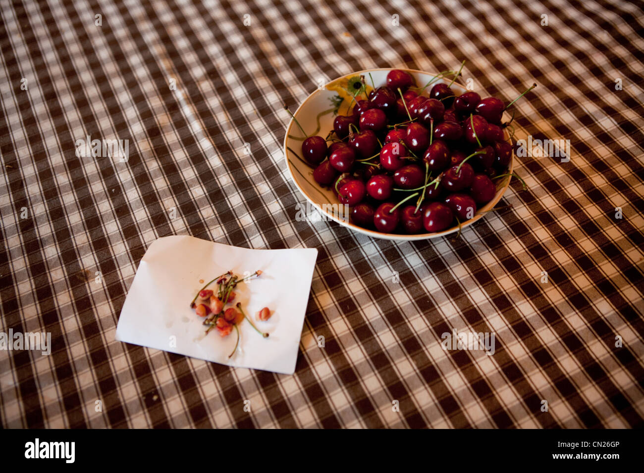 Bowl of cherries on checked tablecloth - Stock Image