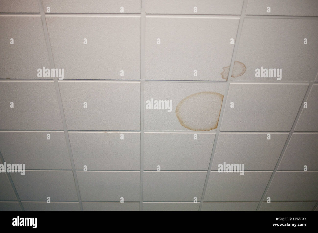 Stained ceiling tiles - Stock Image