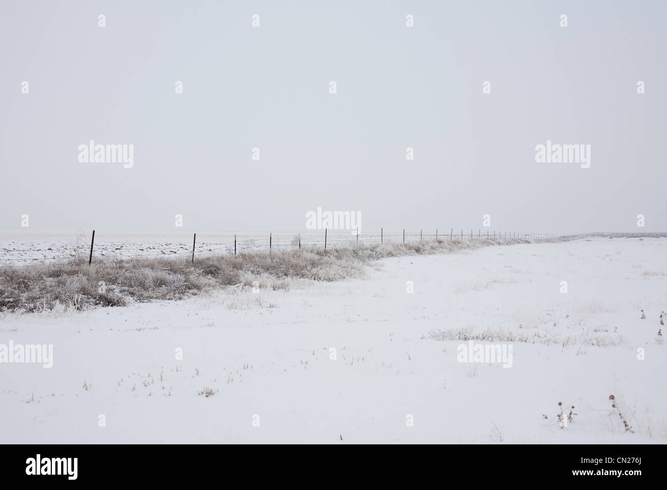 Field and fence in the snow Stock Photo