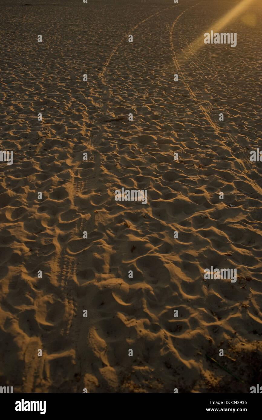 Tyre tracks on sandy beach - Stock Image