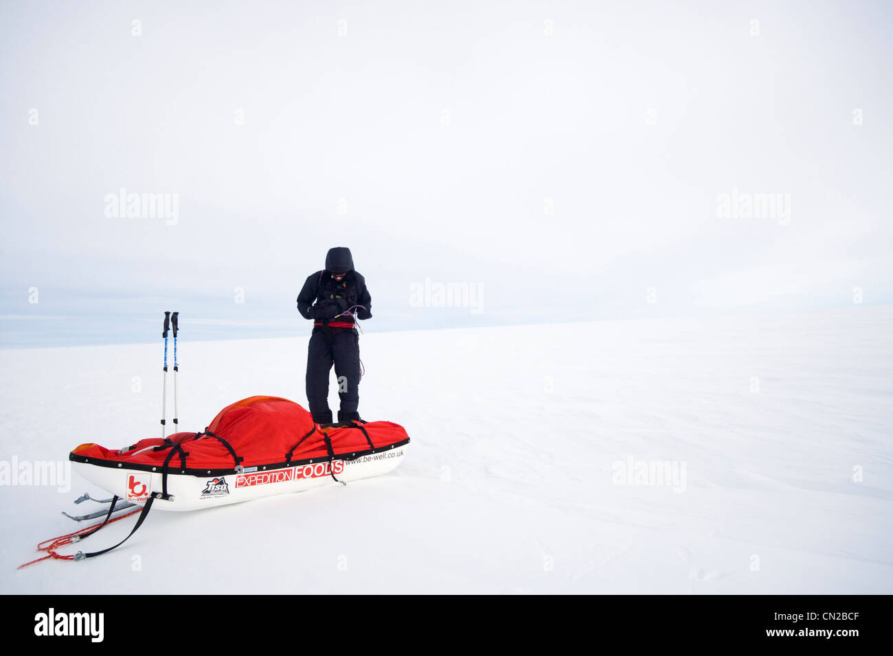 Arctic polar explorer takes rest break on icecap, Greenland - MR - Stock Image