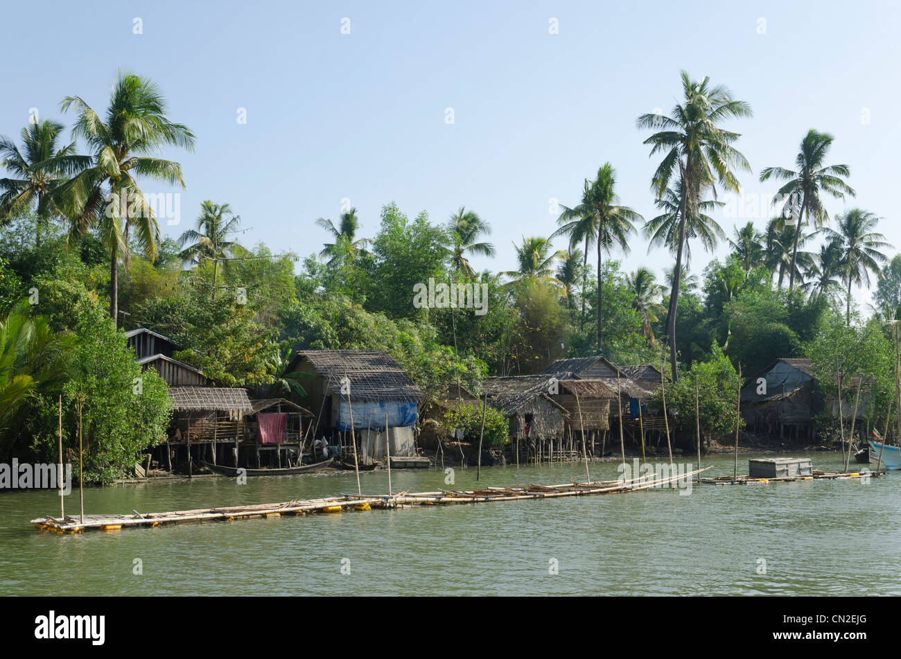 Bamboo huts and crab farm with coconut trees in background for Fish river tree farm