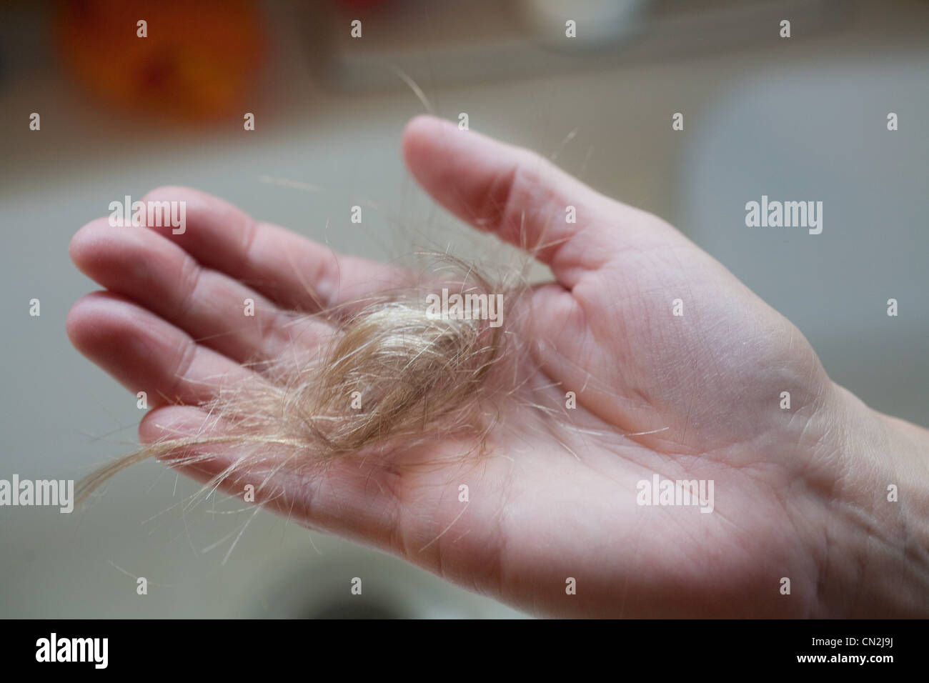 Adult holding pieces of blond hair in palm - Stock Image