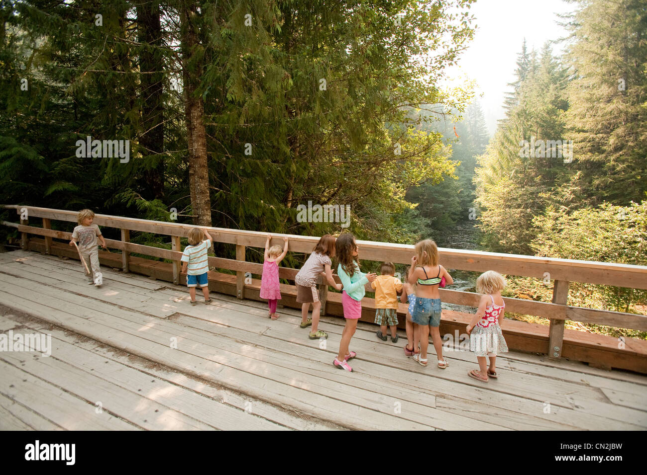 Group of children standing on wooden bridge in forest - Stock Image