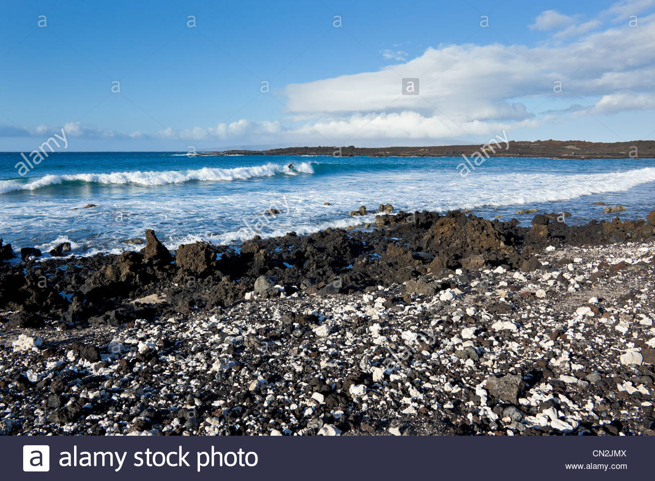 Coral (white) and lava rock at La Perouse Bay site of the last lava flow on island of Maui in state of Hawaii USA - Stock Image