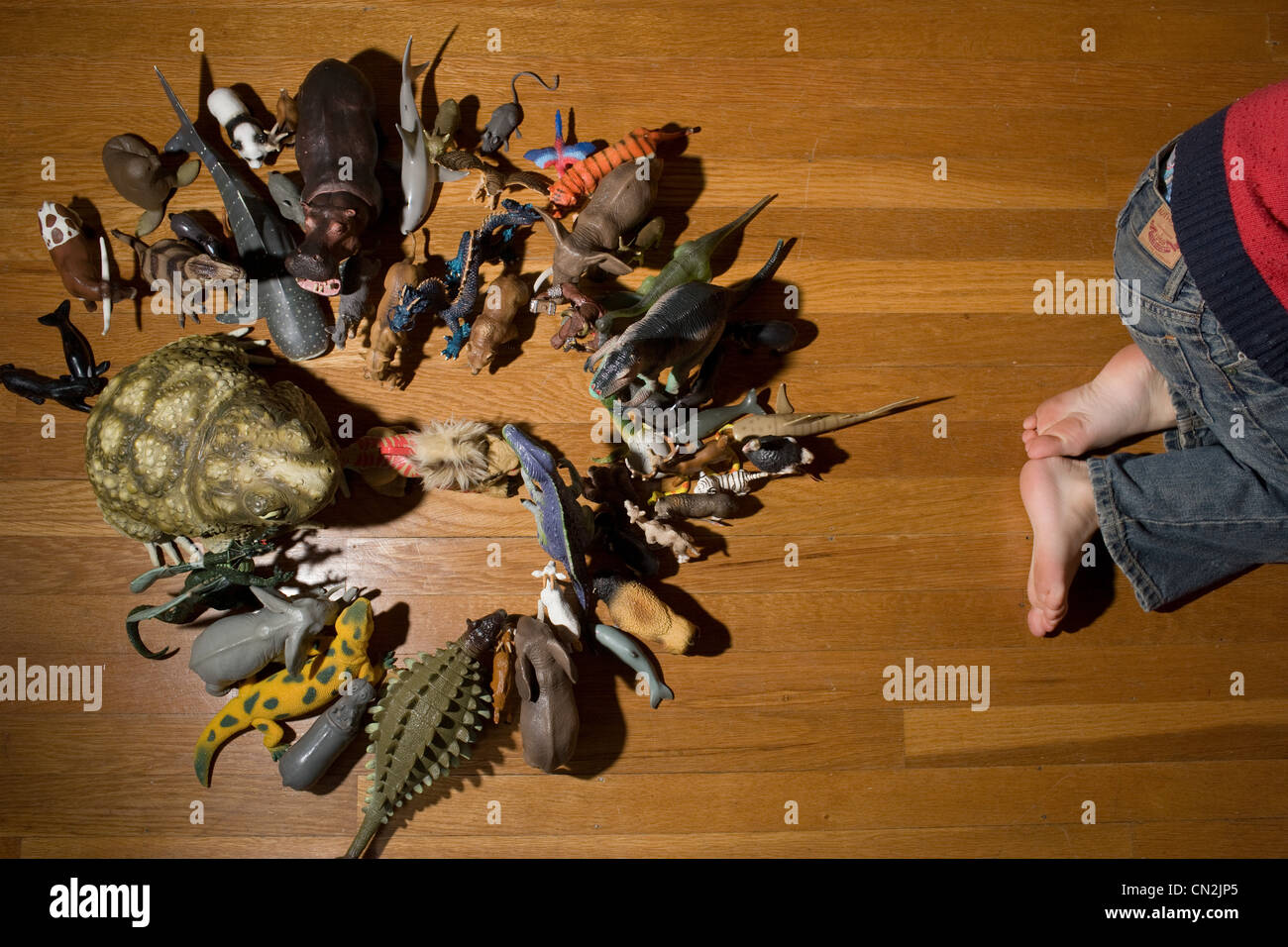 Toddler boy with toy animals on floor - Stock Image