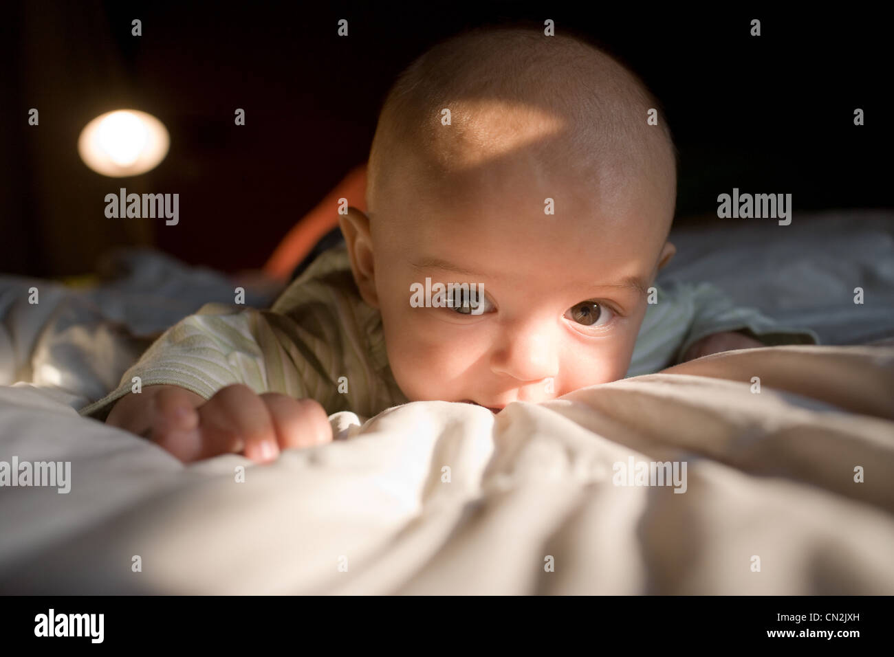Baby boy lying on front, close up - Stock Image